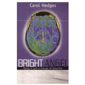 Bright Angel - Carol Hedges cover